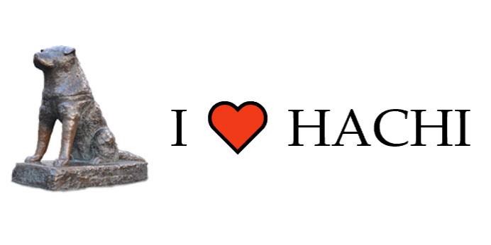 I LOVE HACHI